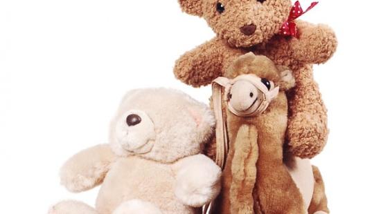 Teddy Bear Toss także w Sanoku! Przynieś maskotkę i rzuć ją na lód