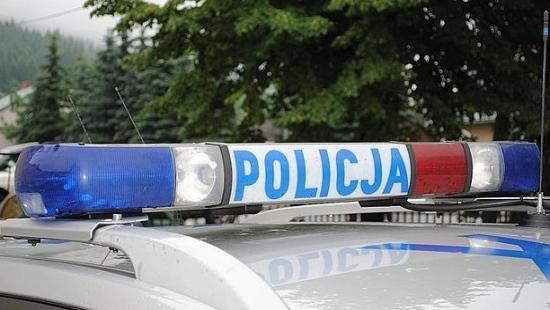 Pijany mężczyzna stracił panowanie nad autem i zniszczył ogrodzenie z drzewek