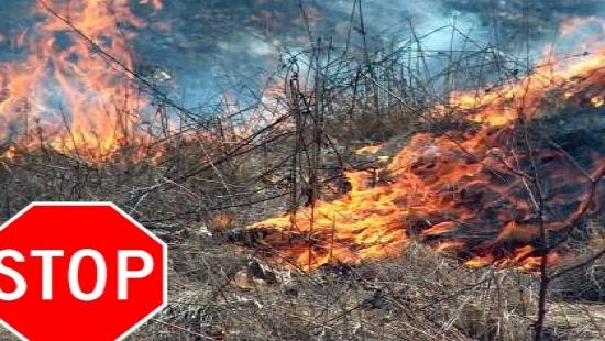 Nie wypalajmy traw!