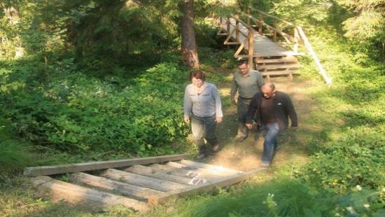 Przybywa turystów na nowych ścieżkach przyrodniczych w Bieszczadach