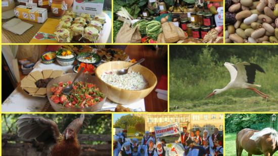 """WALKA O ZDROWIE: Prawdziwa żywność od prawdziwych rolników! Podpisz """"Deklarację Belwederską"""""""