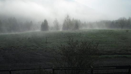 """,,Ukryte we mgle"""" oraz ,,Drzwi do tajemnicy"""" wyróżnione w konkursie fotograficznym (ZDJĘCIA)"""