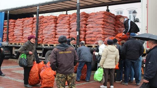 SANOK: Rozdali 24 tony marchwi! (ZDJĘCIA)