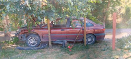 Kierowca miał ponad trzy promile. Wylądował na ogrodzeniu (ZDJĘCIE)