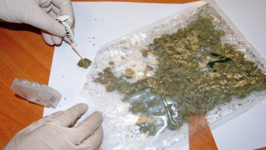 Obywatel Ukrainy chciał przemycić ponad kilogram marihuany przez granicę! (ZDJĘCIA)