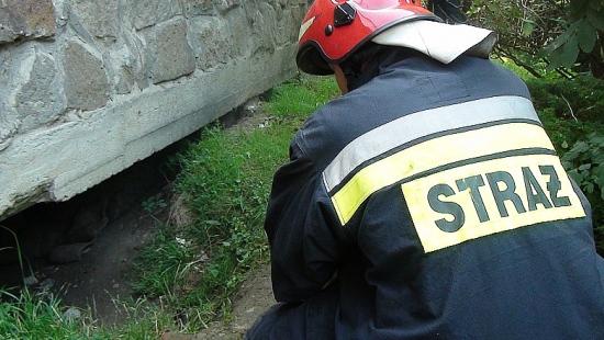 Akcja ratunkowa na Jagiellońskiej. Dwóch mężczyzn trafiło do szpitala (ZDJĘCIA)