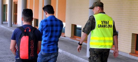 GRANICA: Śmigłowiec w akcji. Ukrainiec przemycał Turków (FOTO)